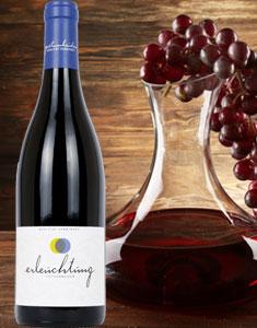 Rotwein Erleuchtung Pfalz