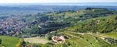 Rotwein-Valpolicella Cantina-Bennati Valpolicella Wein Italien Amarone