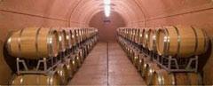 Rotwein im Eichenfass Cantina-Bennati Valpolicell Wein-Italien Amarone
